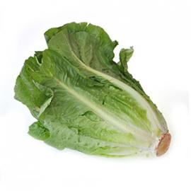 Насіння салату Ромен
