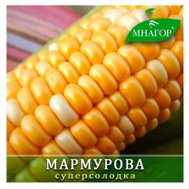 Насіння кукурудзи цукрової Мармурова F1 (ранньостиглий 70–72 днів)