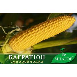 Насіння кукурудзи цукрової Багратіон F1 (середньоранній 74–78 днів)