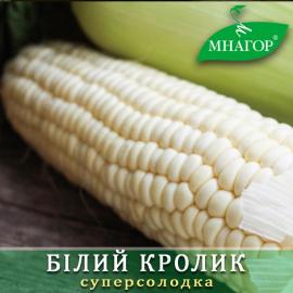 Насіння кукурудзи цукрової Білий Кролик F1 (ранньостиглий 72–74 днів)