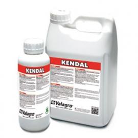 Kendal (Кендал)