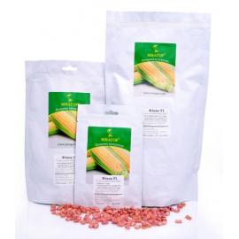 Насіння кукурудзи цукрової Фіона (Солодка Мрія) F1 (ранній 69–71 днів)