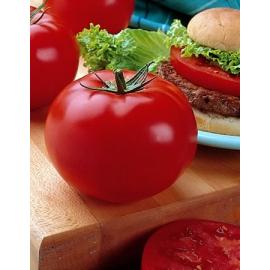 Насіння томата Біг Біф F1 (Big Beef)