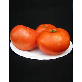 Насіння томата Мірсіні F1 (Mirsini)